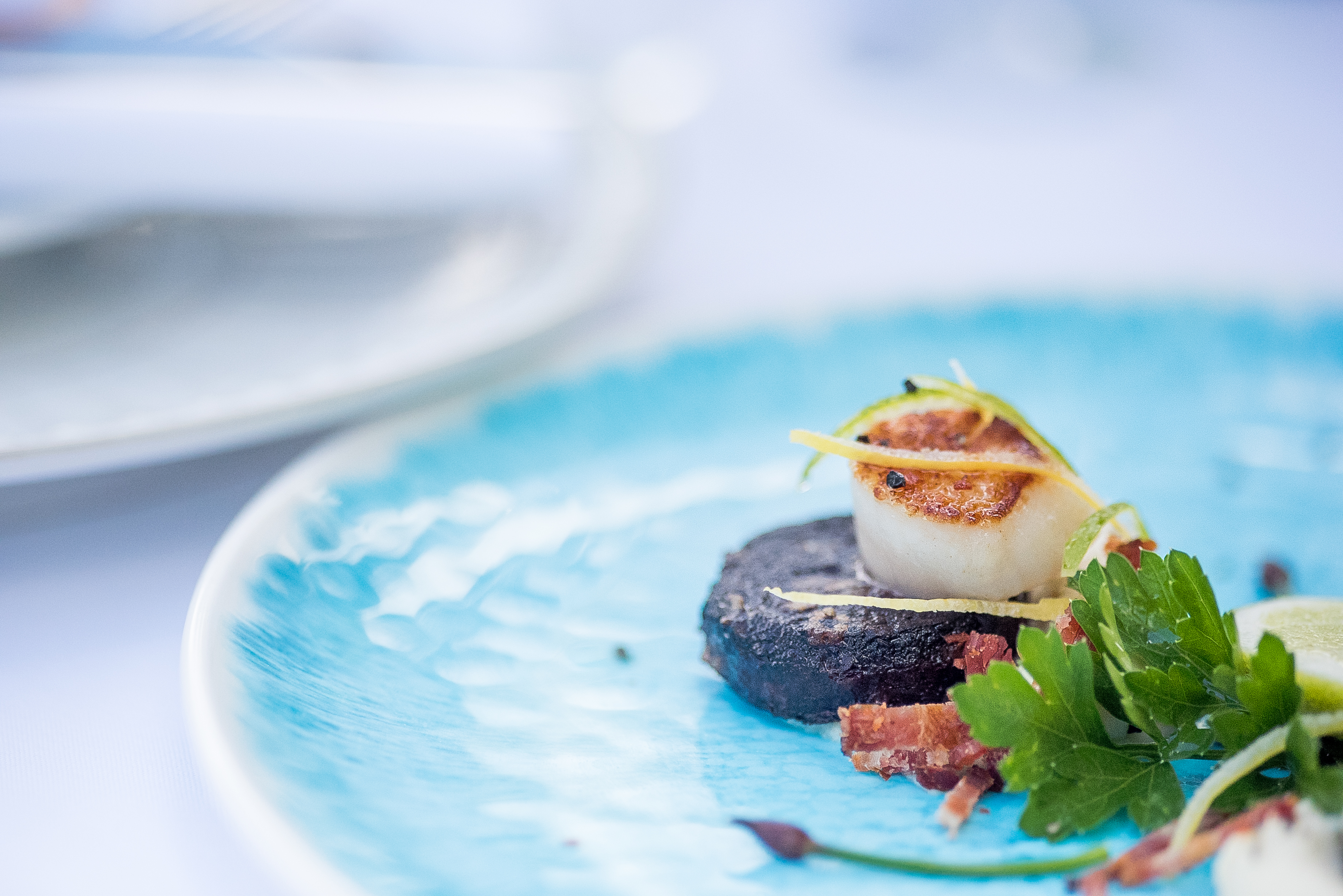 Kent Food Photographer - black pudding and scallop